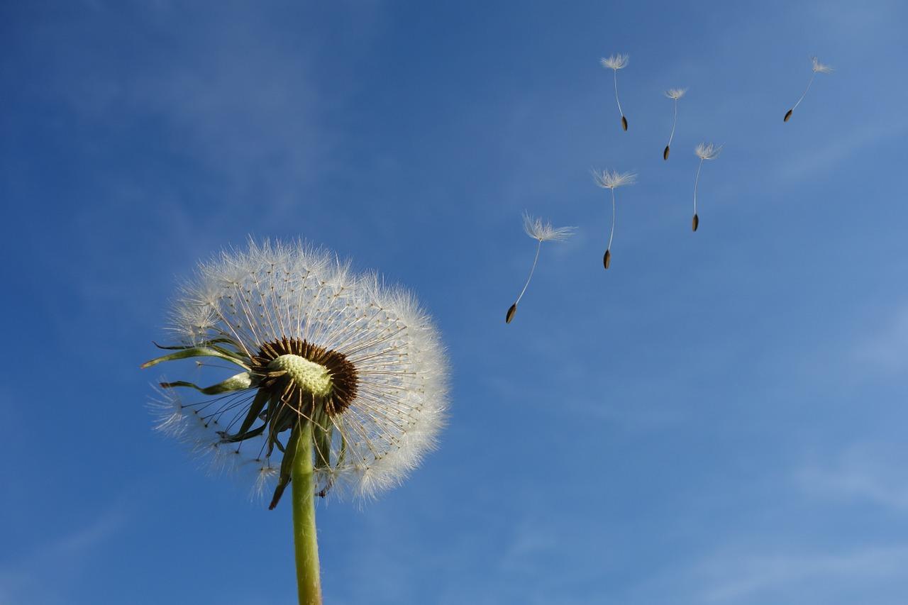 風の流れは|昭和福音詩歌33